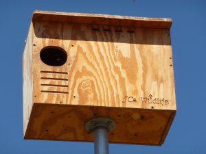 Barn owl box at Wolff Vineyards